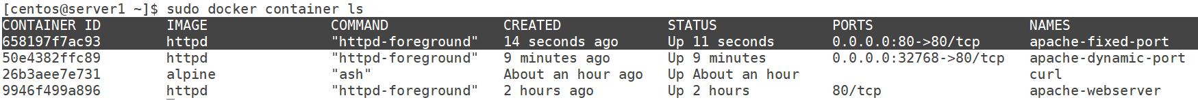 Ways to Run Apache Web server in Docker Container | GeekyLane
