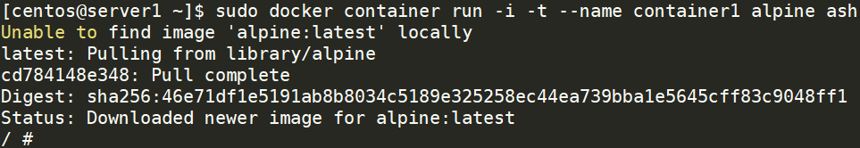 run docker image using alpine image
