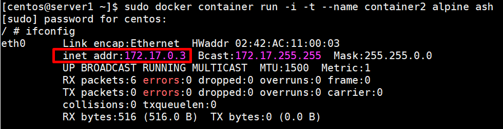 run a docker container with name