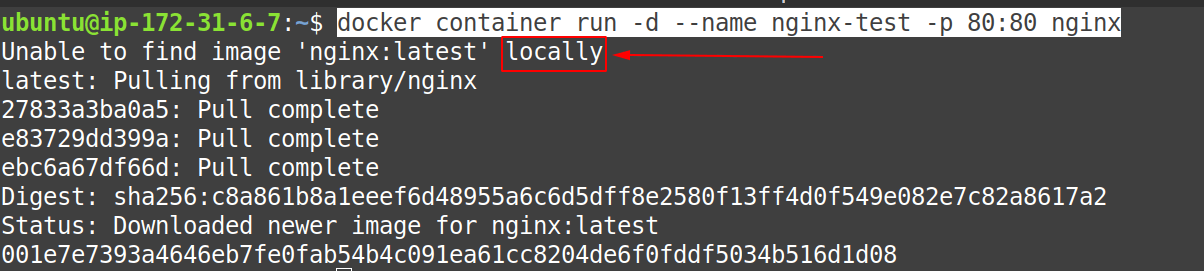 Docker container run command