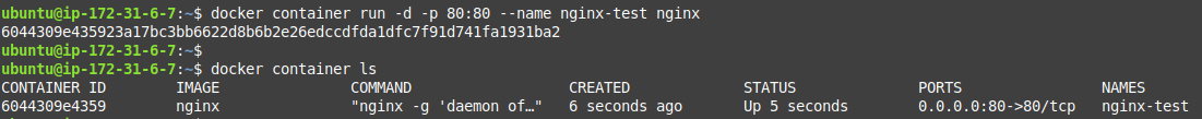 Start an nginx container
