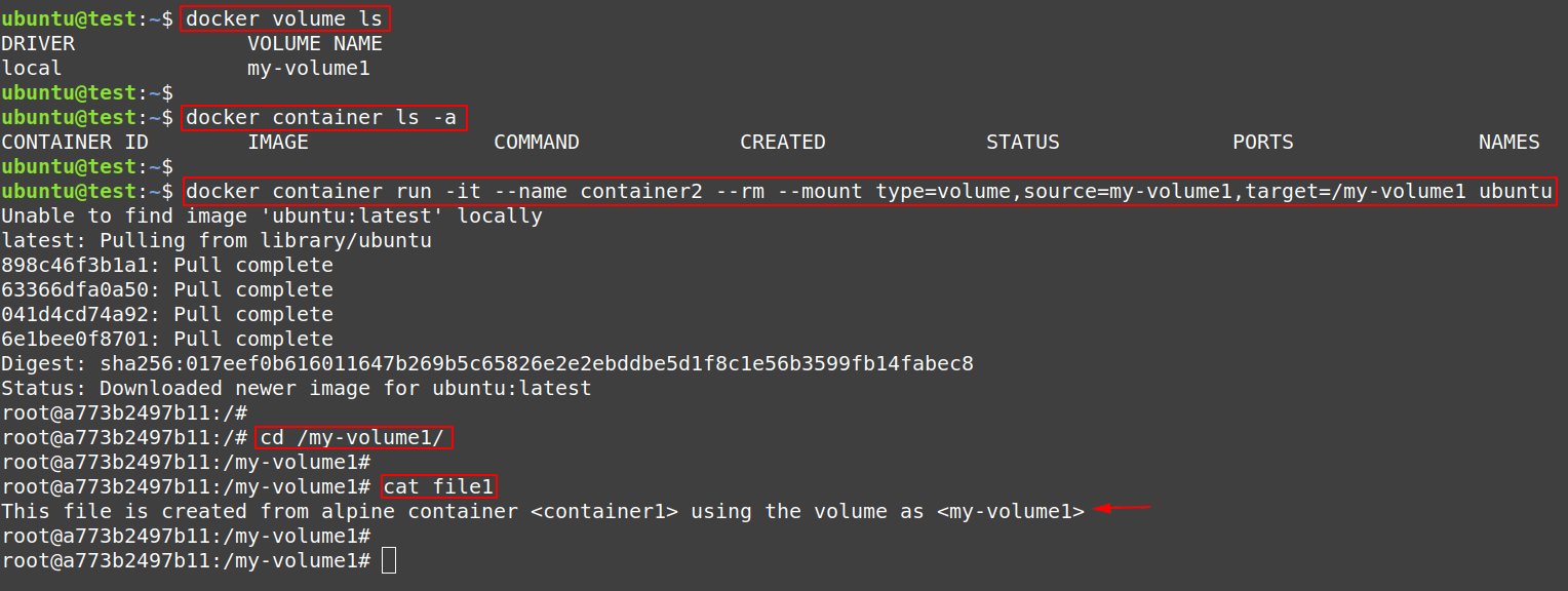 Check the contents inside a volume but with correct way using another container
