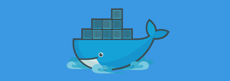 What happens when we run the docker container run command_