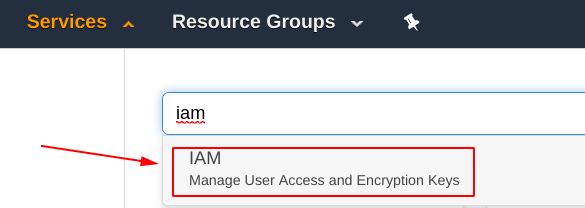 Select the IAM service from AWS dashboard