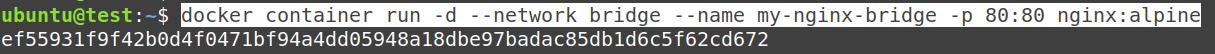 Recreate the my-nginx-bridge container