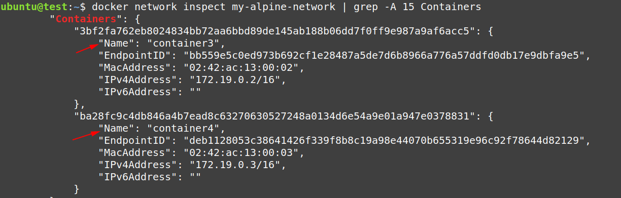 Again check the configuration of my-alpine-network