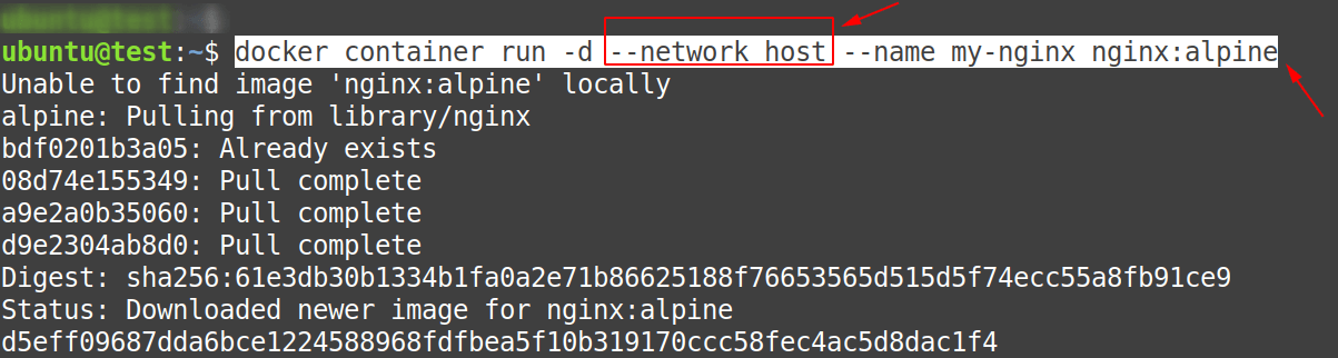 Create an nginx container using the host network without specifying the port mapping